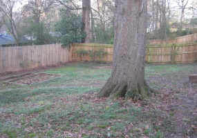 Fenced Back yard with beautiful Historic Oak Tree and several Flood Lights